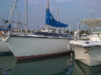 Photo Dufour Yacht Dufour 2800 Occasion de 1977