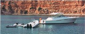 Photo Viking Viking 43 EXPRESS Occasion de 1997